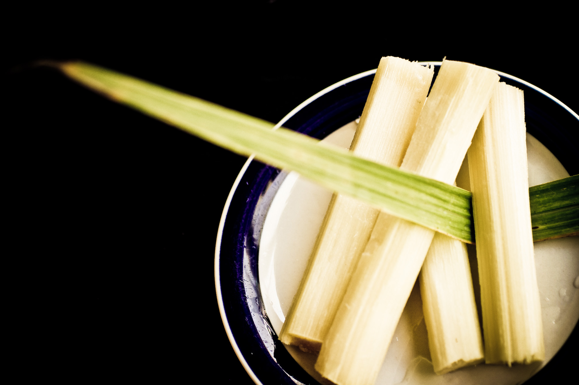 Harvesting Sugarcane – Culinary Road Trippin in the U.S.A